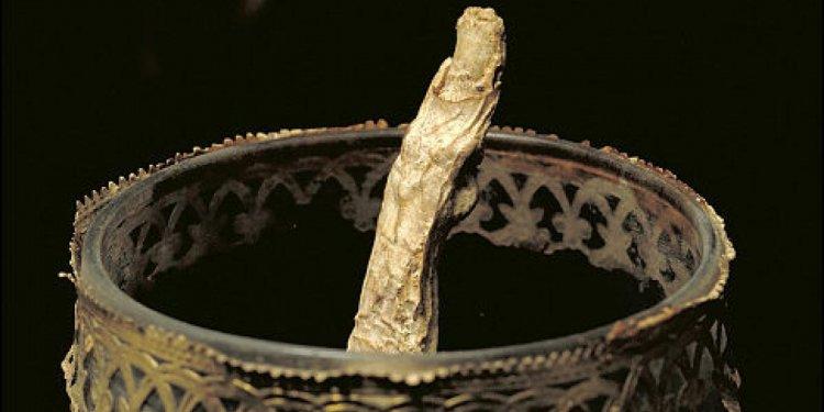 Tooth of Galileo Galilei